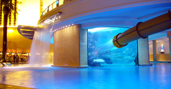 decorating crazy swimming pools